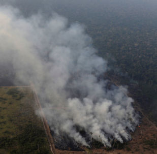غابات الأمازون تحترق