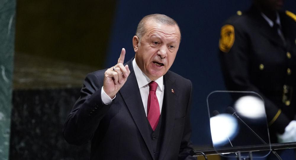 أردوغان: تركيا لا تمانع دخول الجيش السوري إلى شمال البلاد فهذه أرضهم