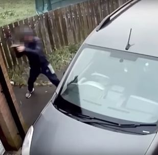 لص فاشل حاول سرقة سيارة فحطم وجهه
