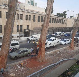 النحت على الأشجار في دمشق