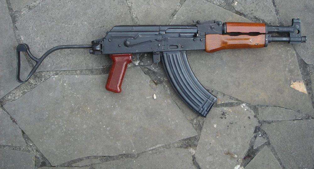 بندقية PM md. 63/65
