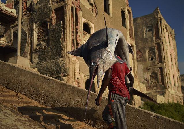 رجل يحمل سمكة الشراع  في مقديشو