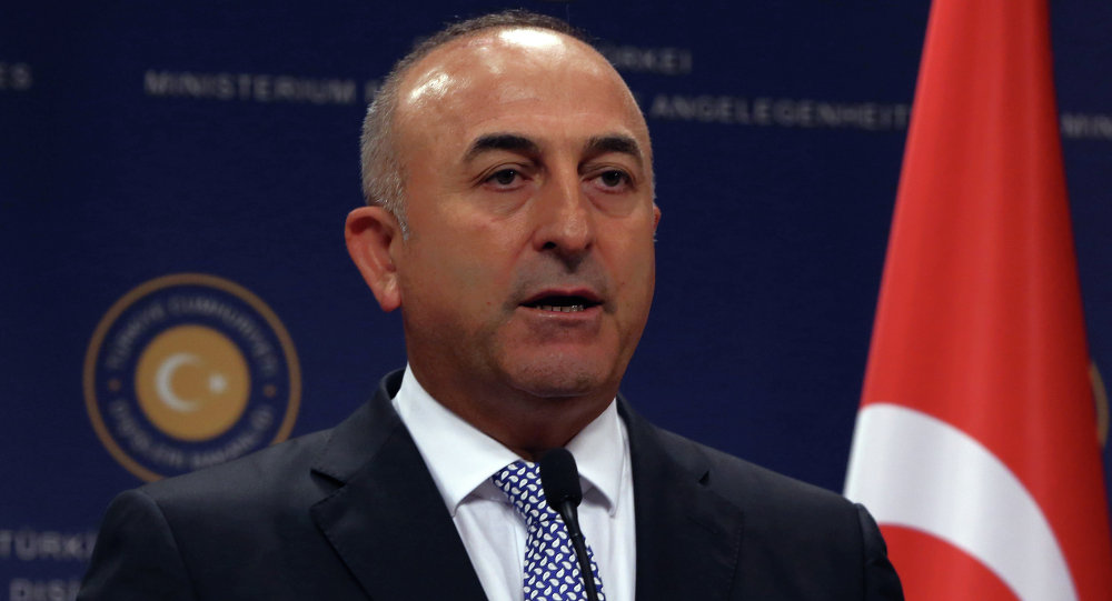 وزير الخارجية التركي