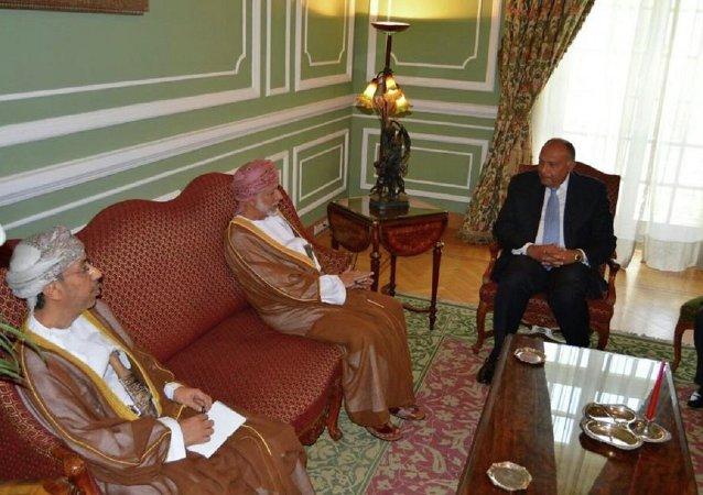 وزيرا خارجية مصر وسلطنة عُمان
