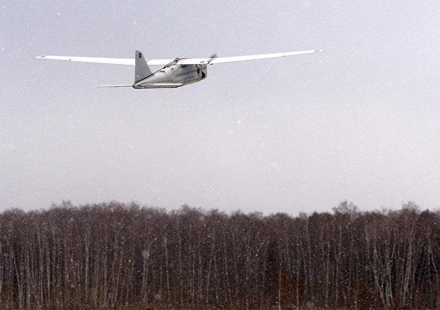 طائرة أورلان-10 بدون طيار