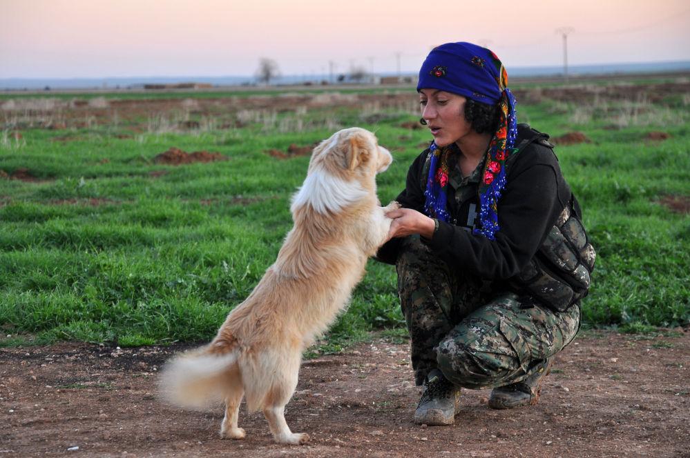الحسناوات الكرديات في صفوف البيشمركة