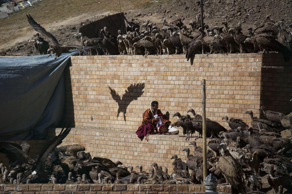 راهب بوذي تحيط به النسور