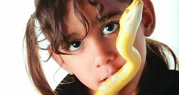 طفلة سعودية تربى الأفاعى الضخمة