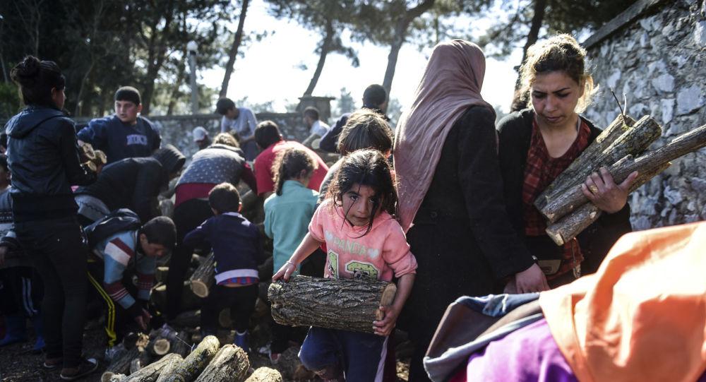 اللاجئون يجمعون الحطب لإشعال النار في القرية اليونانية إيدوميني، اليونان 31 مارس/ آذار 2016.