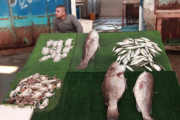 سوق السمك بغزة