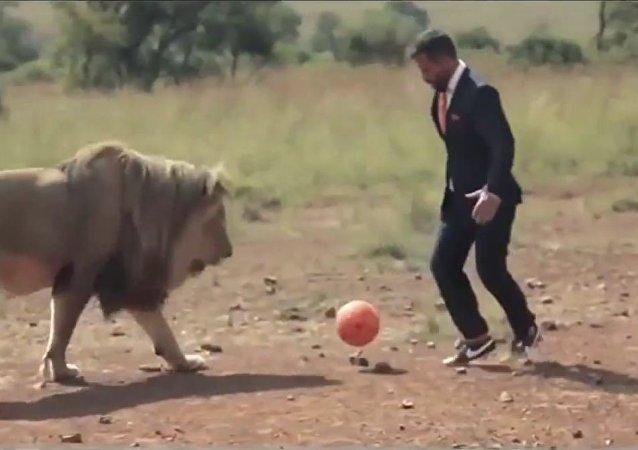رجل متألق يلعب الكرة مع فريق الأسود