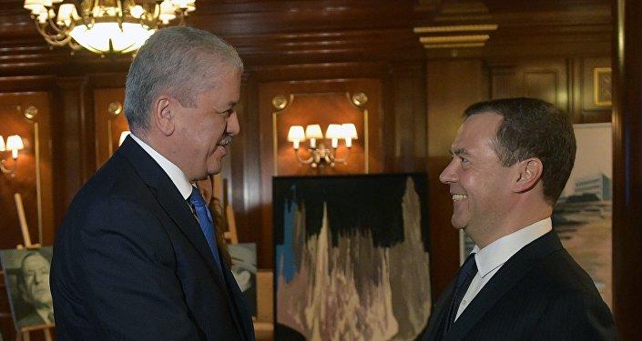 رئيس الوزراء الجزائري عبد المالك سلال مع نظيره الروسي دميتري ميدفيديف