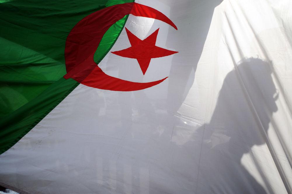 تحالف الأحزاب الإسلامية في الجزائر بحثا عن البرلمان