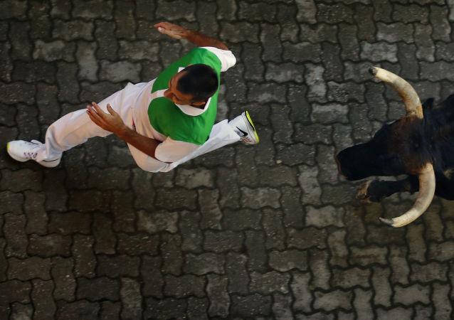احتفال سان فيرمين في بامبلونا، حيث تحولت إلى حلبة لمصارعة الثيران، إسبانيا 7 يوليو/ تموز.