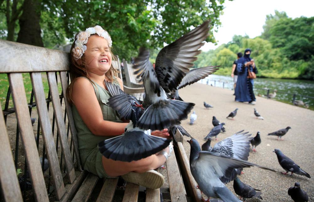 طفلة صغيرة تلعب مع الطيور في حديقة بلندن، 20 يوليو/ تموز 2016