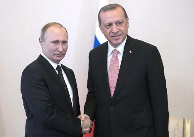 مصافحة بين بوتين وأردوغان