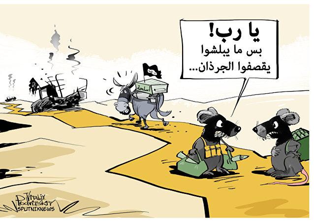حقيقة تسليح الحمير من قبل داعش