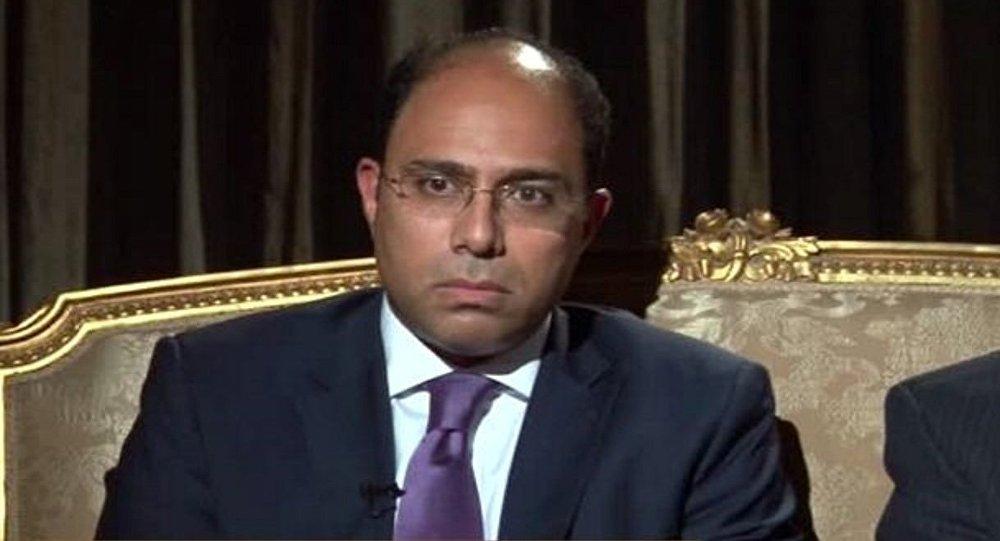 المتحدث الرسمي للخارجية المصرية أحمد أبو زيد