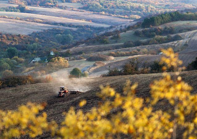 جرافة يحرث الأرض الزارعية خلال فصل الخريف في قرية كلينكوفا بمنطقة سيمفيروبل، شبه جزيرة القرم، روسيا