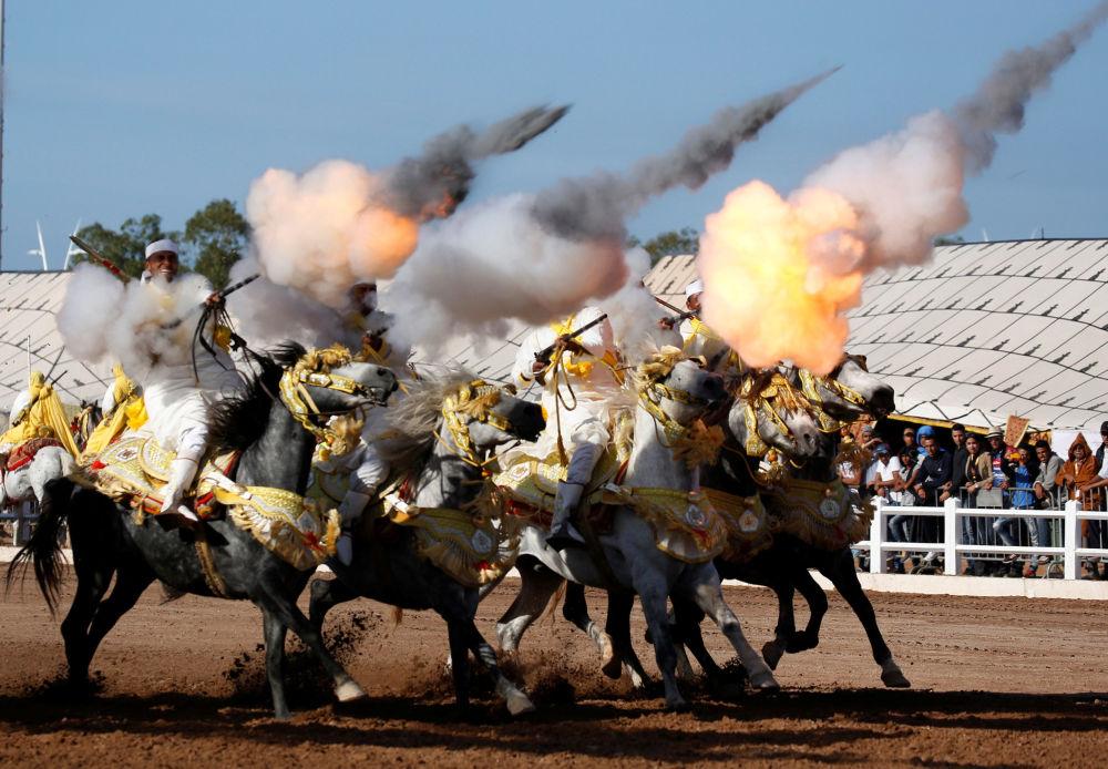 عرض في المعرض السنوي للخيول في المنتجع المغربي الجديد