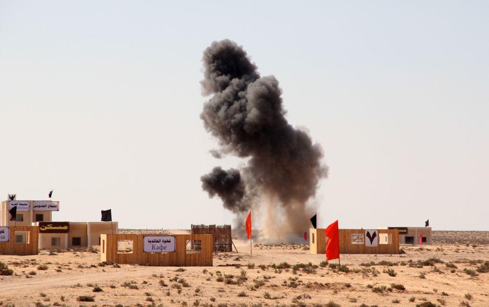 المناورات العسكرية المصرية الروسية المشتركة