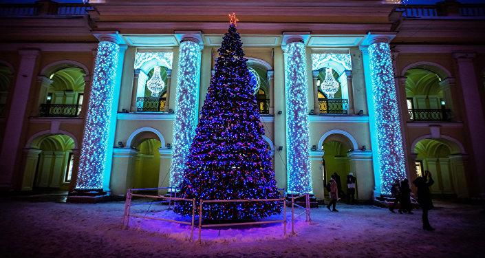 شجرة عيد الميلاد في مدينة سانت بطرسبورغ
