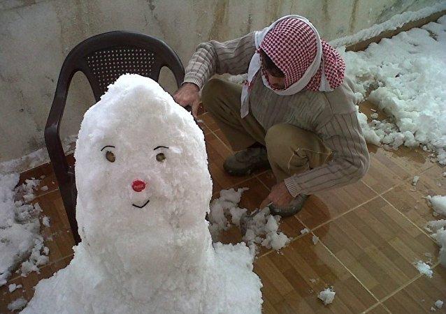 الثلوج في الأردن