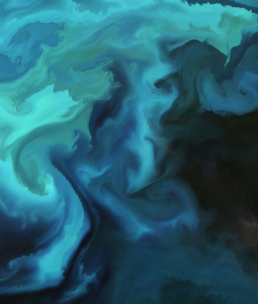 صورة للعوالق البحرية في بحر بارنتس، من قبل القمر الصناعي Sentinel-2A التابع لوكالة الفضاء الأوروبية