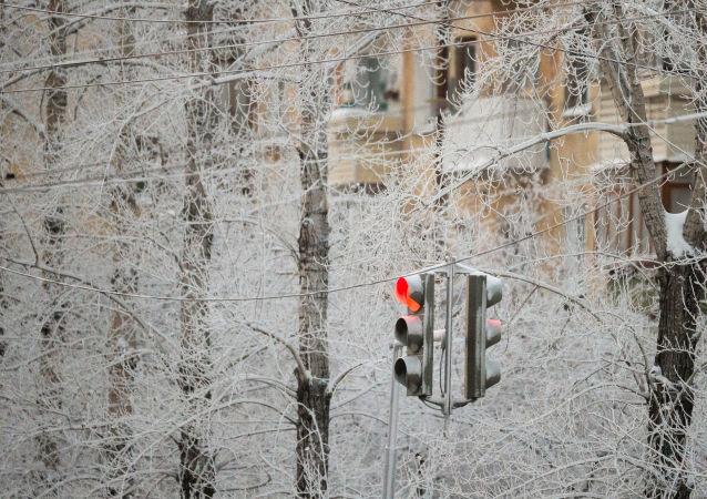 برد قارس في أومسك، روسيا
