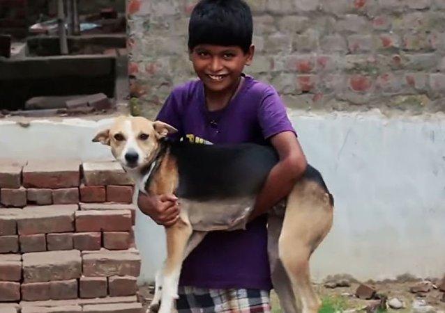 طفل هندي يشرب لبن الكلاب