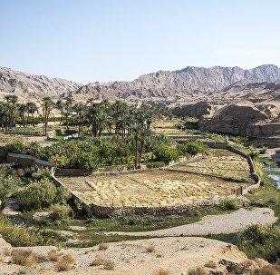 من الحقائق التي تسمح لسكان مدينة تاباس بزراعة الرز هي المصادر الطبيعية للماء والجداول التي تشكلها الطبيعة بنفسها.