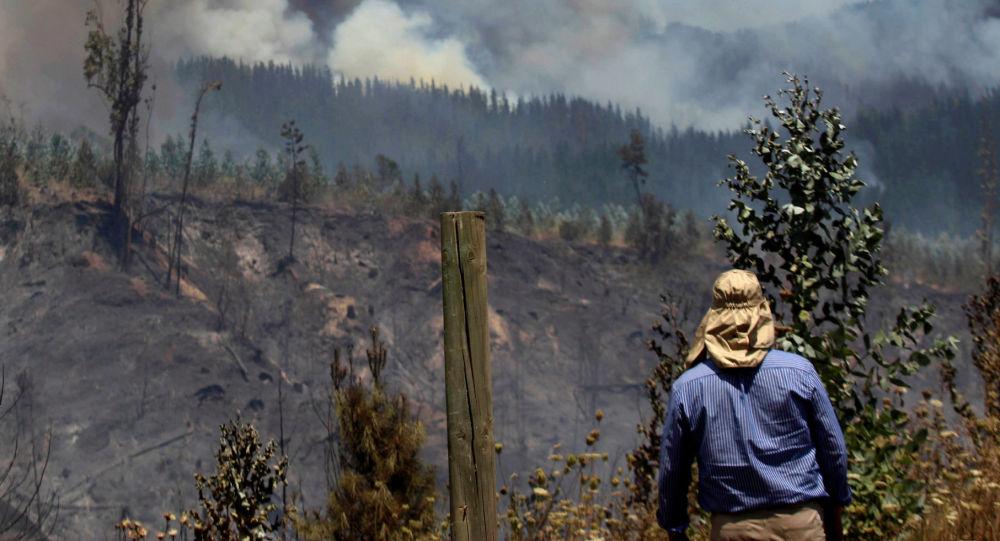 حريق الغابة