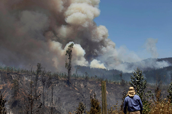 حريق الغابة في تشيلي