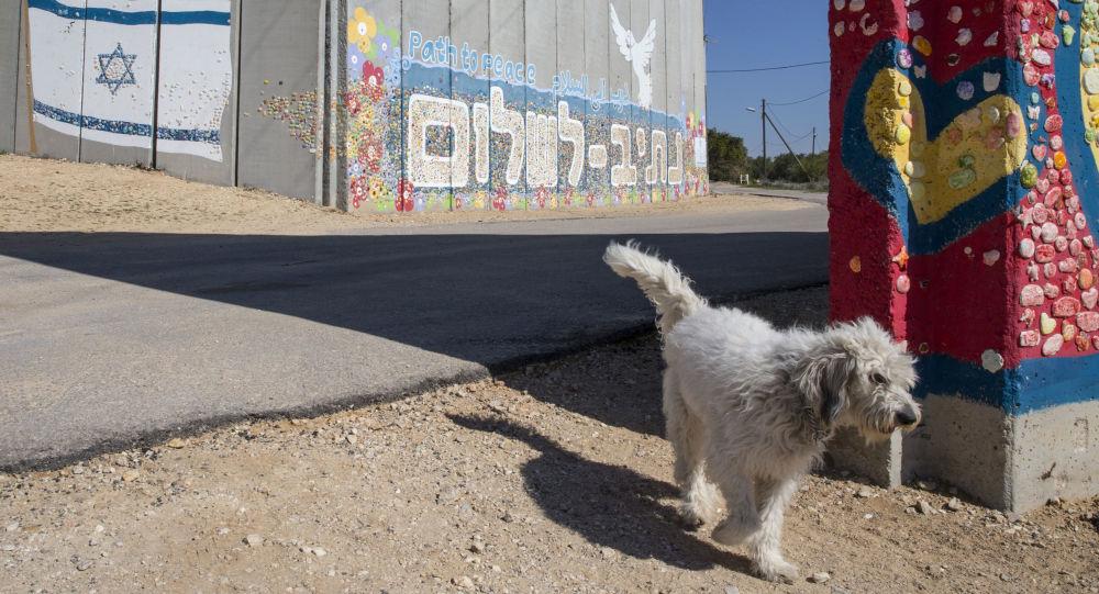 الجدار الفاصل في كيبوتس نيتيف هاسارا على الحدود بين إسرائيل وقطاع غزة، 7 فبراير/ شباط 2017