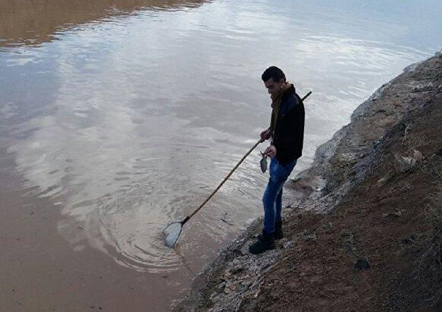 أهالي الرقة يمضون إلى النهر عندما تصبح مياهه حمراء