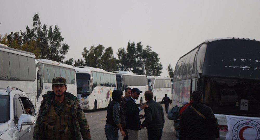حمص الوعر