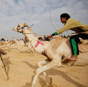 سباق الجمال في مصر