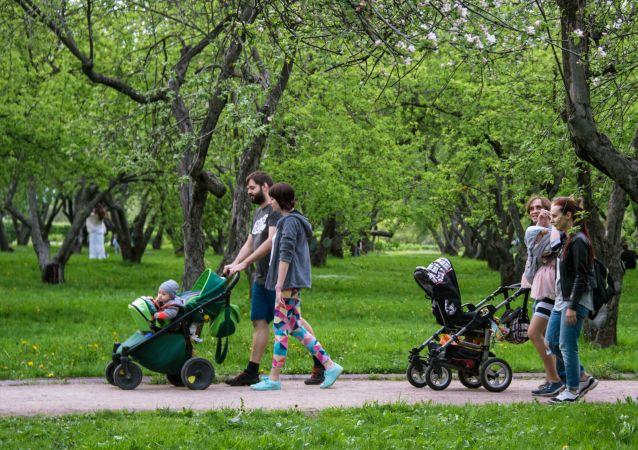 موسم تفتح أزهار التفاح في كولومينسكوي، في موسكو