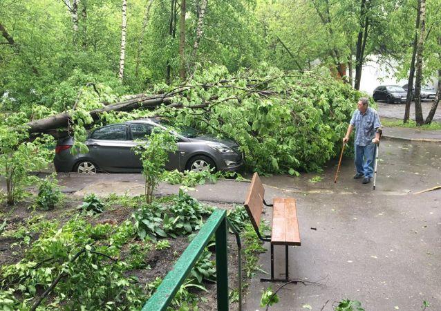 مابعد عاصفة قوية في موسكو