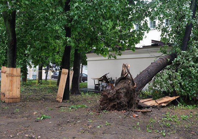 نتائج الإعصار في موسكو