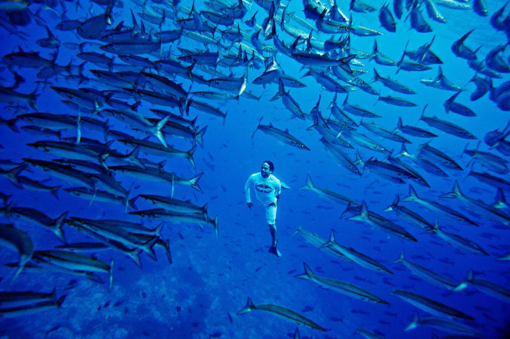 أورلاندو ديوكي يغوص في مياه جزيرة مالبيلو، كولومبيا