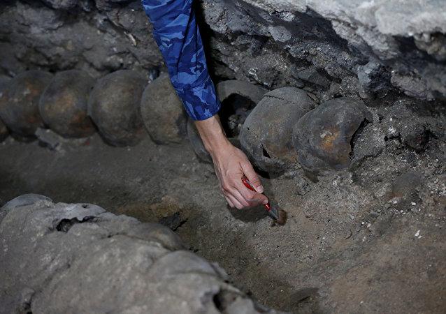 عالمة آثار تتعامل مع الجماجم المكتشفة