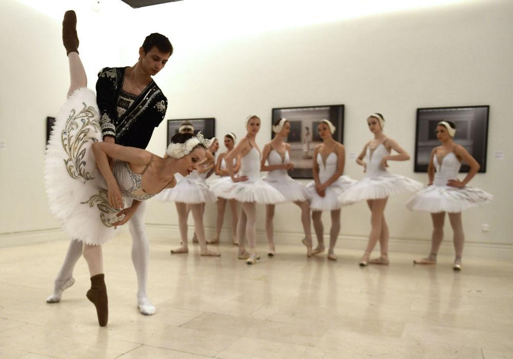 تمارين راقصي الباليه من مدينة سان بطرسبورغ قبل أداء بحيرة البجعة في مسرح مدريد للفنون، إسبانيا