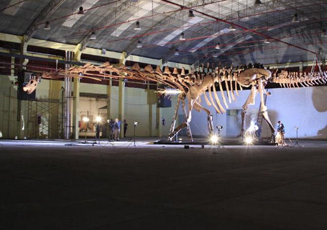 Патаготитан, предположительно крупнейшее сухопутное существо Земли