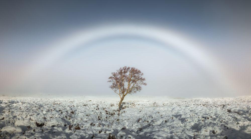 مهدئ، قوس ضبابي للمصور سكوت روبرتسون، الذي فاز بجائزة اختيار الجمهور في مسابقة مصور الطقس لعام 2017