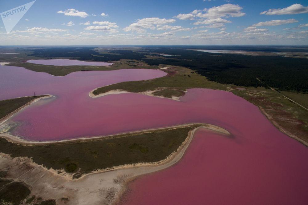 بحيرة مالبونفوي (بحيرة التوت) في حي ميخايلوفسكي في إقليم ألطاي، روسيا