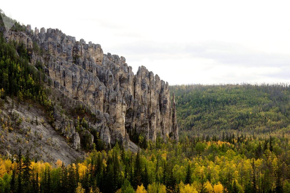 الحديقة الطبيعية الوطنية لينسكيي ستولبي (أعمدة لينا) في ياقوتيا، روسيا