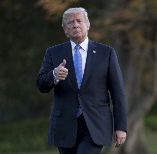 رئيس الولايات المتحدة دونالد ترامب