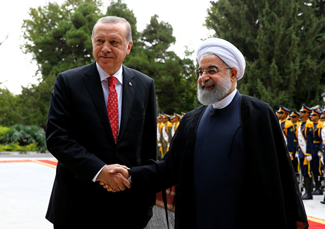 حسن روحاني ورجب طيب أردوغان