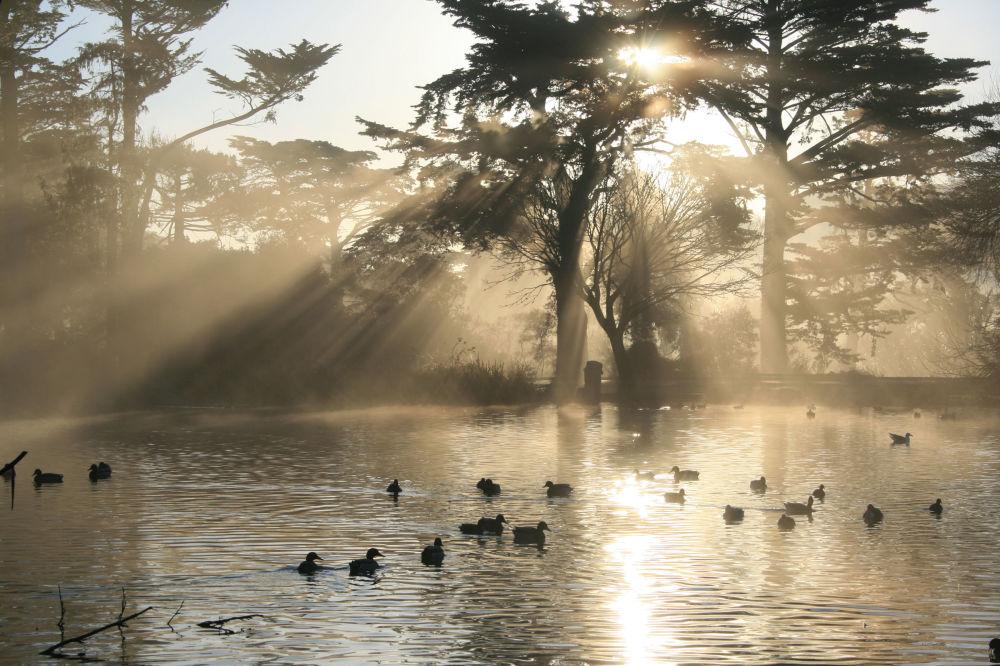 بحيرة ستو في حديقة غولدن غيت، سان فرانسيسكو